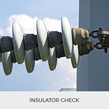 Insulator check