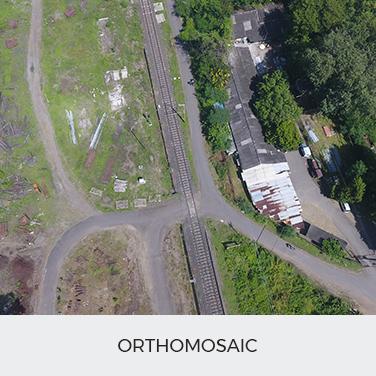 Orthomosaic