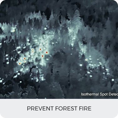 Prevent Forest Fire